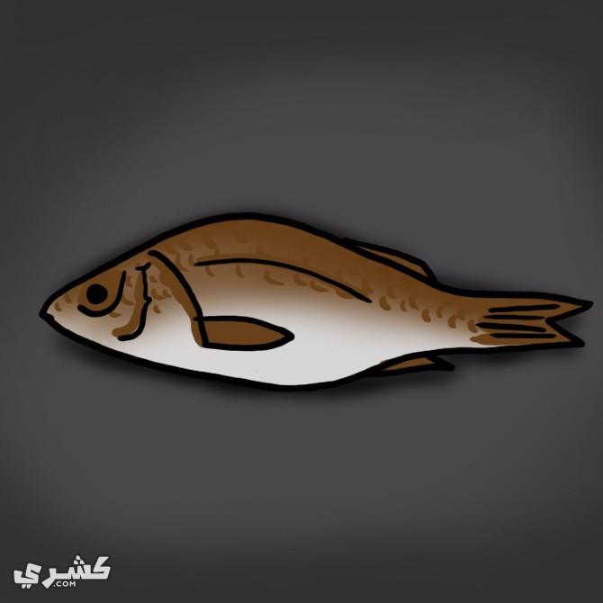قم السمك للقطط