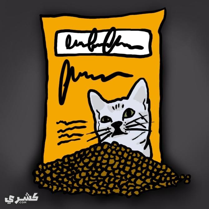 قم بشراء الطعام الجاهز للقطط