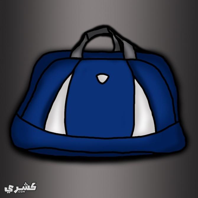 اصطحب حقيبة للهدايا أو التسوق