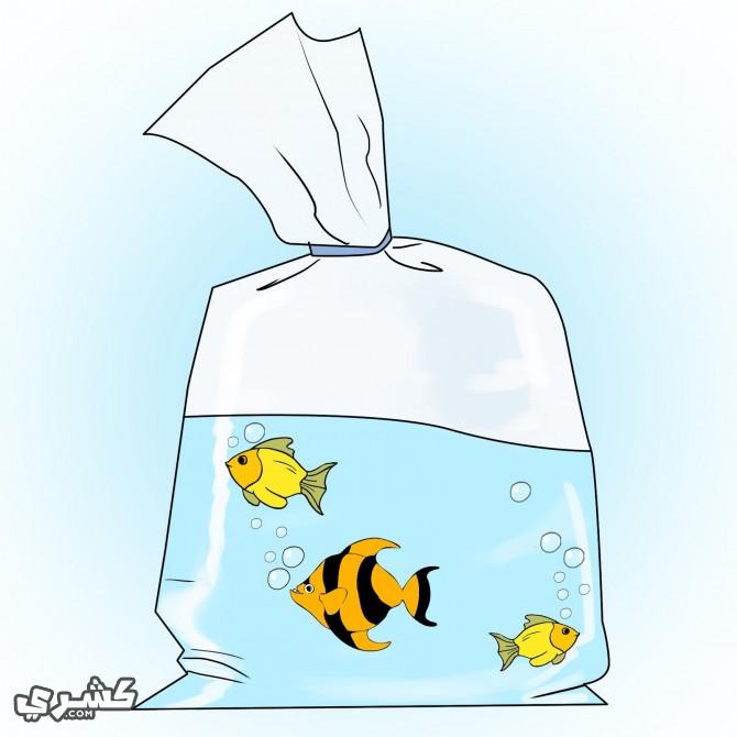 إبدأ بشراء الأسماك