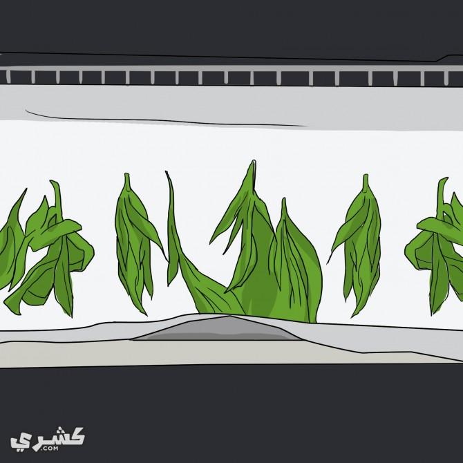 رصي الاعشاب في صينية الخبز