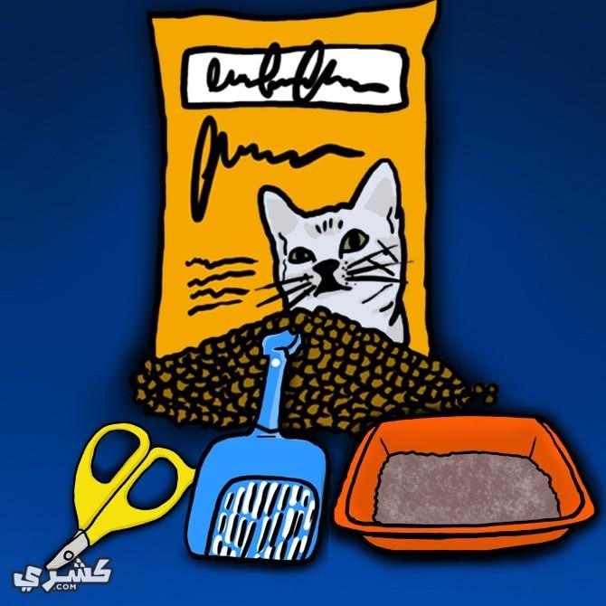 نظف أدوات القطط جيدا