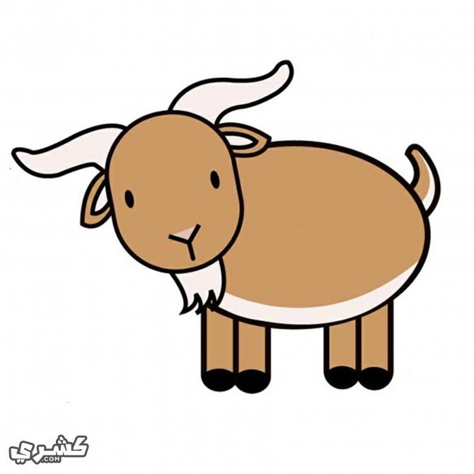 لون الماعز