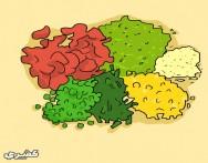 كيف تحفظين الخضراوات بطريقه التجفيف