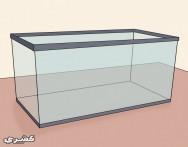 كيف تجهز حوض أسماك الزينة